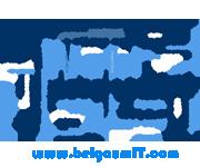 Website Designing/Hosting